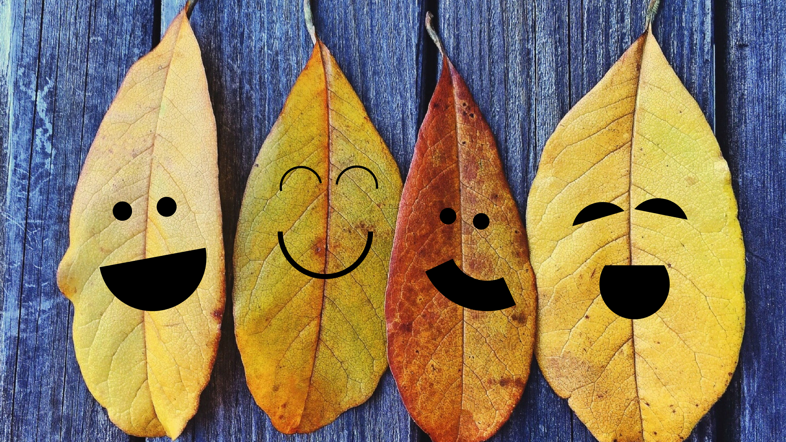four fall leaves lined up with happy faces